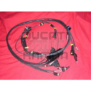 Main wiring harness racing for all P08 computers | Ducati & Aprilia on battery harness, swing harness, pet harness, amp bypass harness, nakamichi harness, dog harness, obd0 to obd1 conversion harness, alpine stereo harness, suspension harness, cable harness, pony harness, maxi-seal harness, oxygen sensor extension harness, safety harness, radio harness, engine harness, fall protection harness, electrical harness,